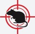 Oakley Pest Control Company